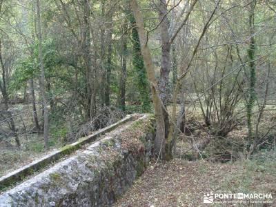 Hoces del Río Duratón - Sepúlveda;senderismo alcobendas viajes organizados viajes senderismo sema
